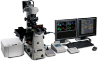 NIKON -TIRF, Confocal Microscope, Multi-Photon System