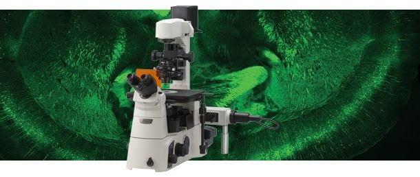 Inverted Microscope Eclipse Ti-U