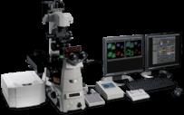 NIKON -TIRF, Confocal Microscope, Multi-Photon System