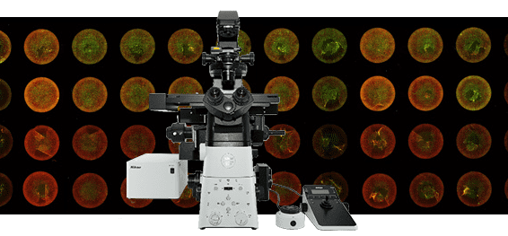 Nikon Microscope Inverted Research Microscope Eclipse Ti2