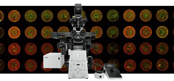 Nikon Inverted Microscope Eclipse Ti-S | EINST Technology